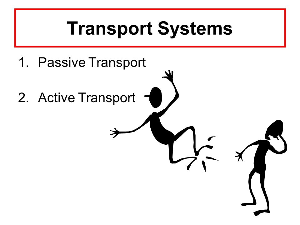 Transport Systems 1.Passive Transport 2.Active Transport