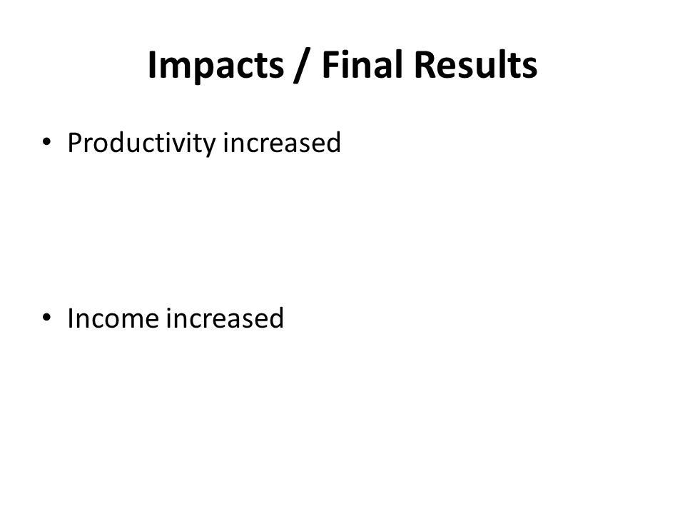 Impacts / Final Results Productivity increased Income increased