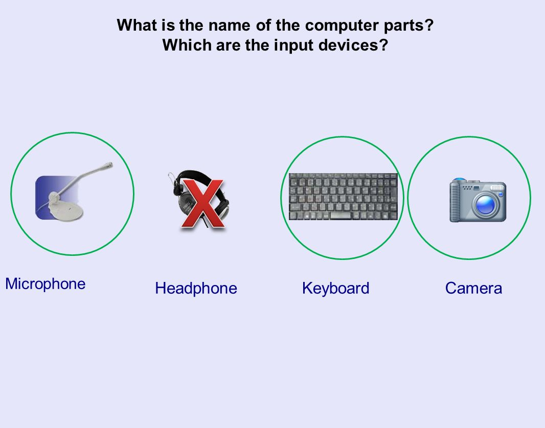 What is the name of the computer parts. Which are the input devices.