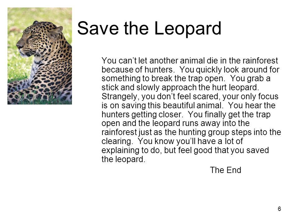 5 Leopard Rescue You have to help whoever is making that awful screaming noise, so you run into the thick jungle.