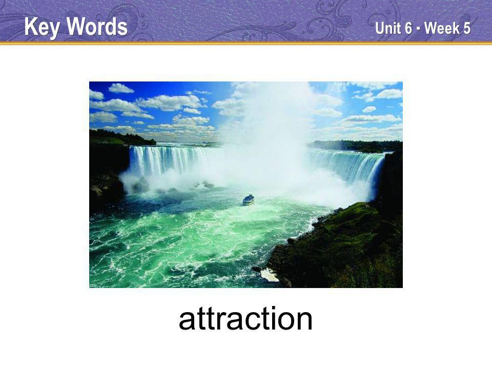 Unit 6 Week 5 attraction Key Words