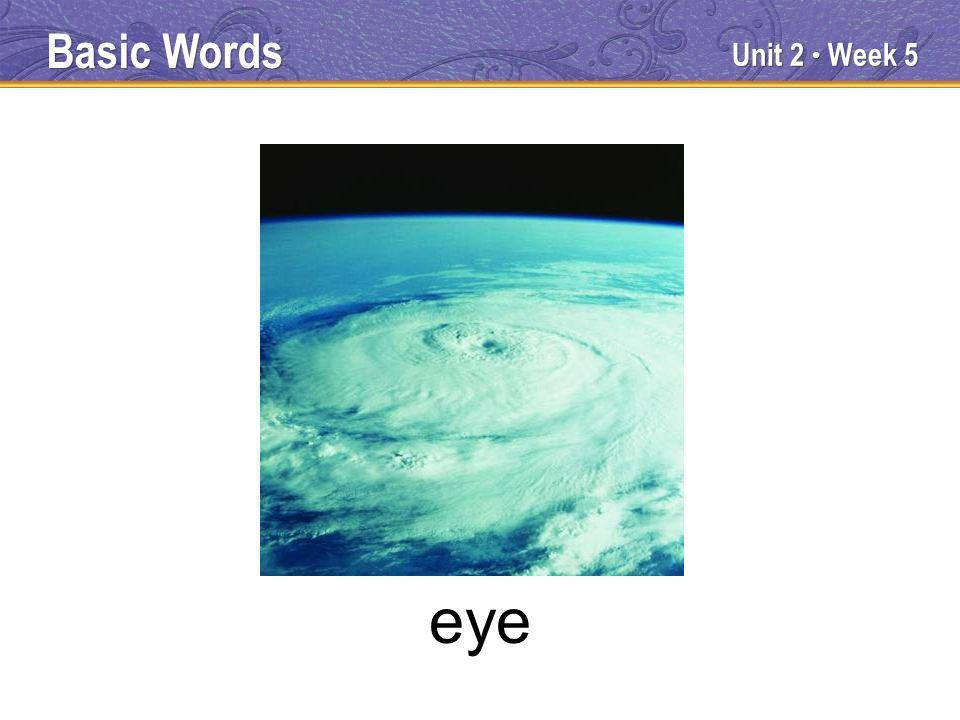 Unit 2 Week 5 eye Basic Words