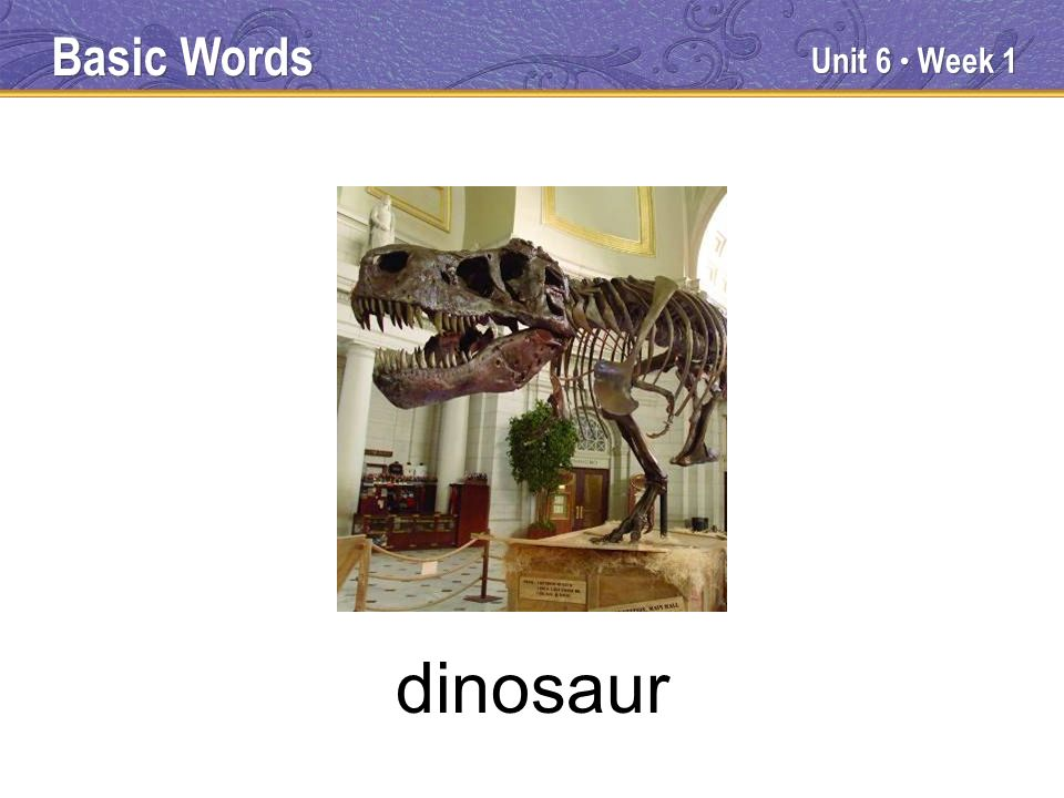 Unit 6 Week 1 dinosaur Basic Words