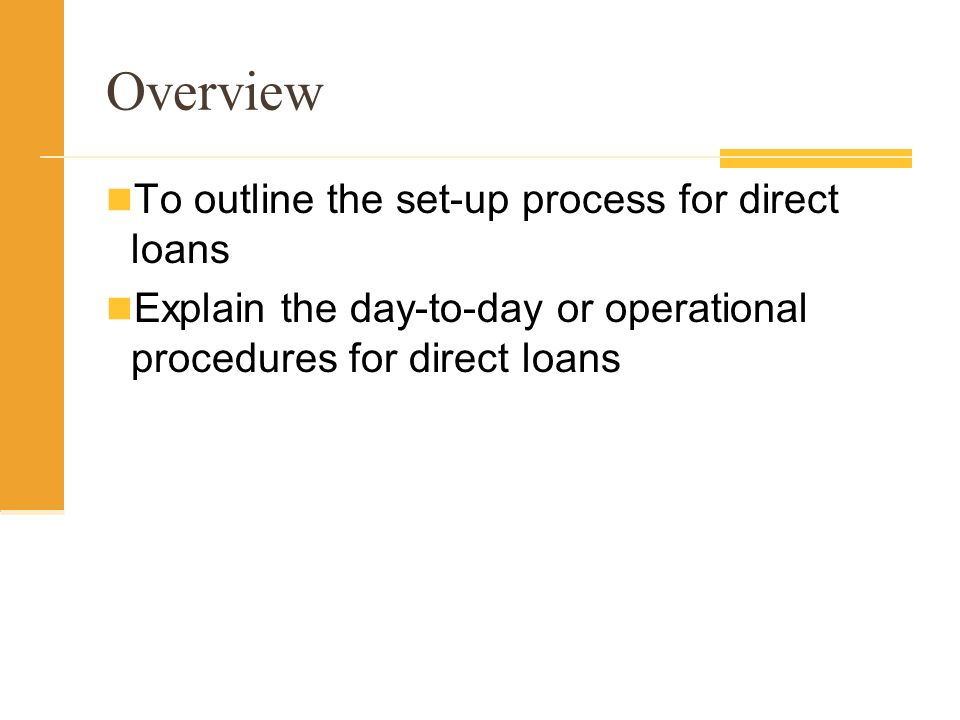 Overview To outline the set-up process for direct loans Explain the day-to-day or operational procedures for direct loans