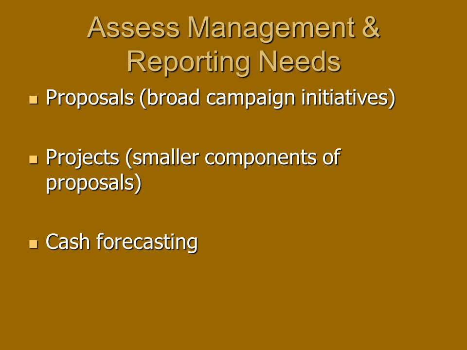 Assess Management & Reporting Needs Proposals (broad campaign initiatives) Proposals (broad campaign initiatives) Projects (smaller components of proposals) Projects (smaller components of proposals) Cash forecasting Cash forecasting