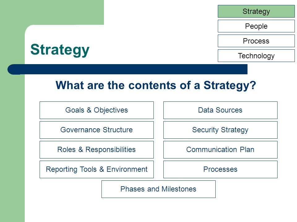 Strategy People Process Technology Goals & Objectives Reporting Tools & Environment Governance Structure Roles & Responsibilities Data Sources Processes Security Strategy Communication Plan Phases and Milestones What are the contents of a Strategy