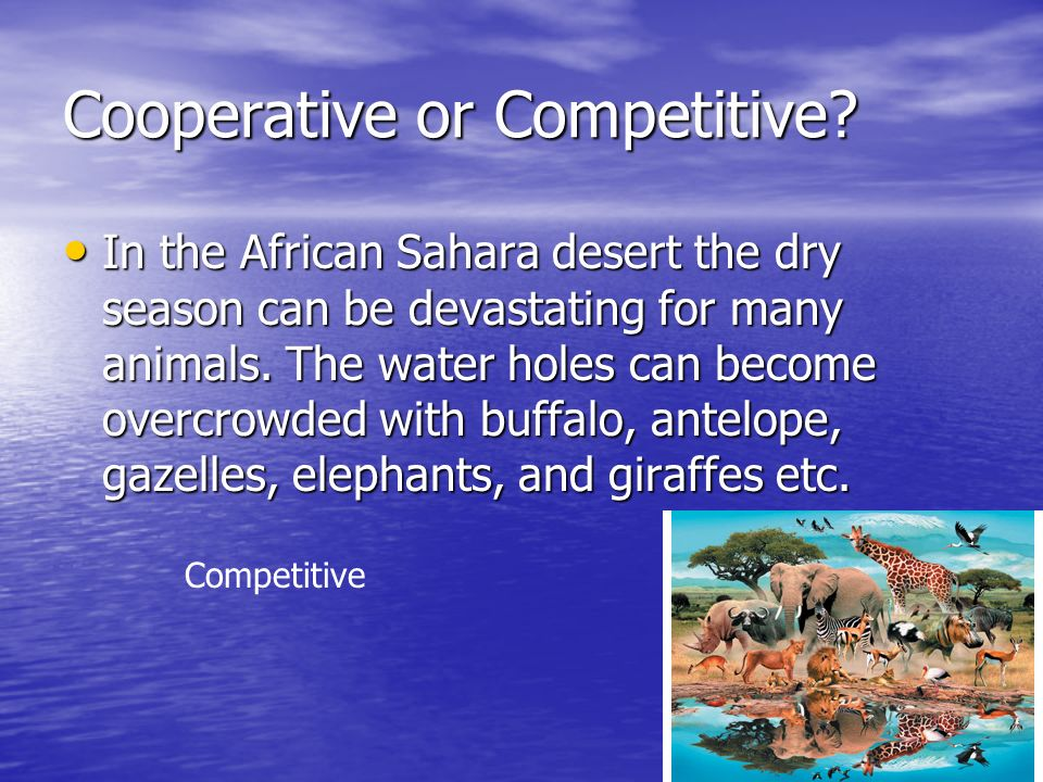 Cooperative or Competitive.