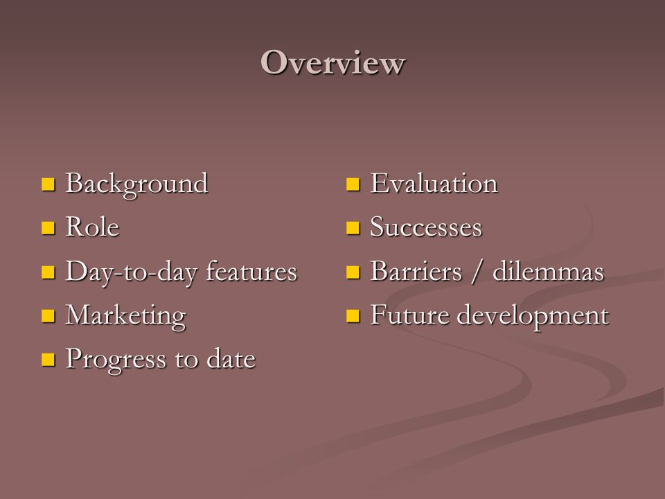 Overview Background Background Role Role Day-to-day features Day-to-day features Marketing Marketing Progress to date Progress to date Evaluation Successes Barriers / dilemmas Future development