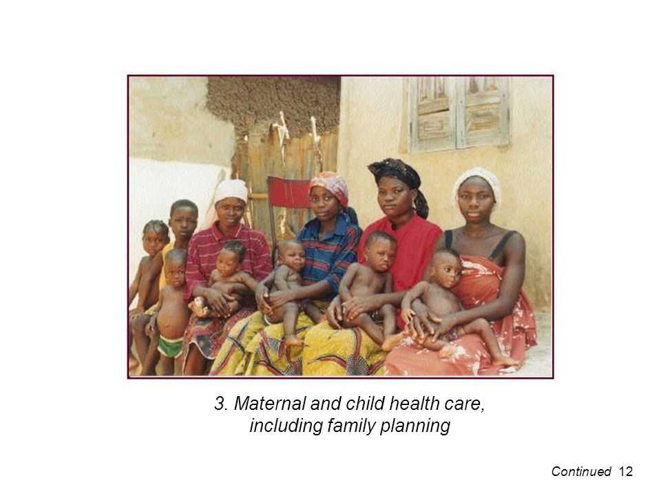 3. Maternal and child health care, including family planning 12Continued