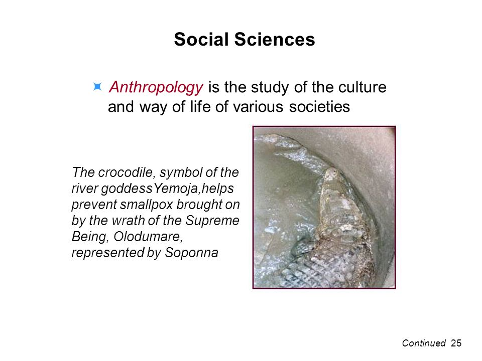 Social Sciences Anthropology is the study of the culture and way of life of various societies The crocodile, symbol of the river goddessYemoja,helps prevent smallpox brought on by the wrath of the Supreme Being, Olodumare, represented by Soponna 25Continued