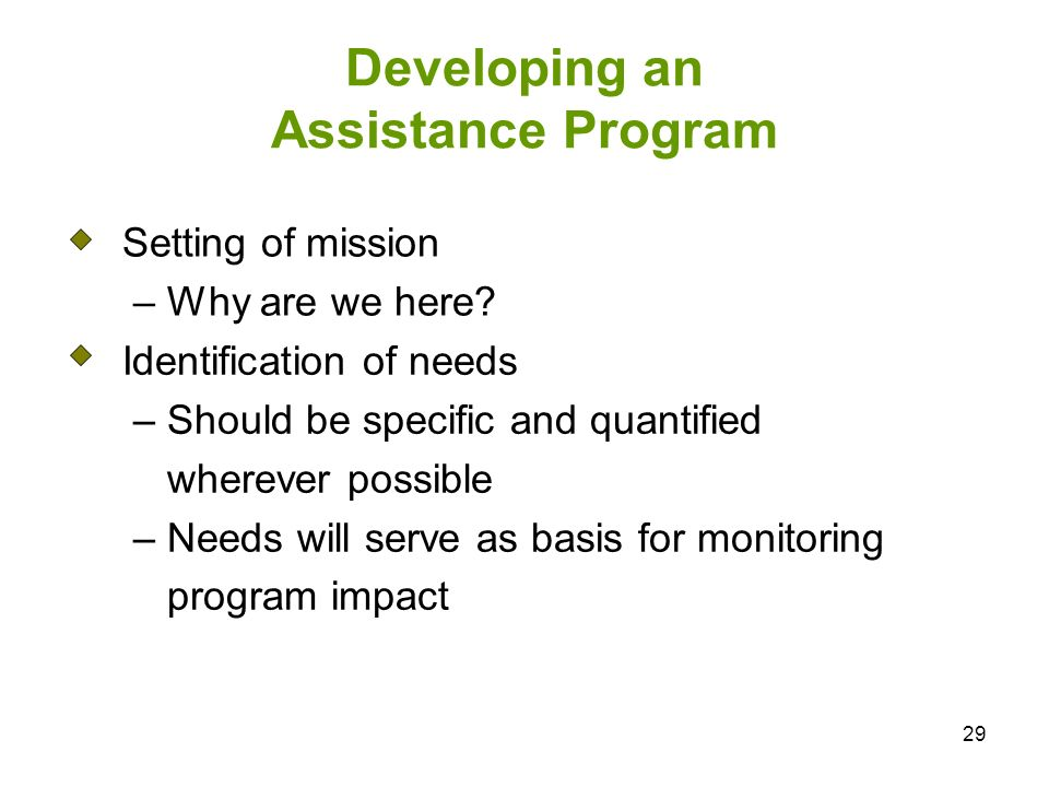 29 Developing an Assistance Program Setting of mission – Why are we here.