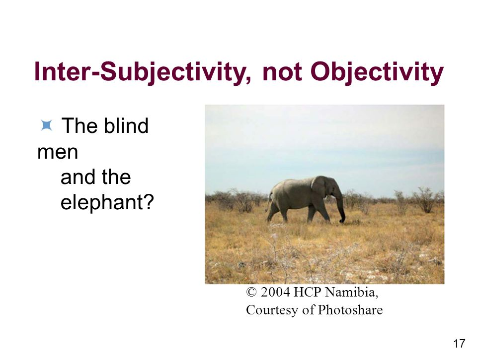 17 Inter-Subjectivity, not Objectivity The blind men and the elephant.