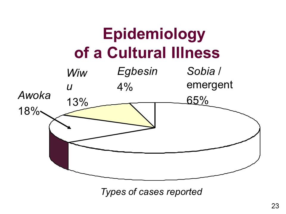 23 Epidemiology of a Cultural Illness Awoka 18% Wiw u 13% Egbesin 4% Sobia / emergent 65% Types of cases reported