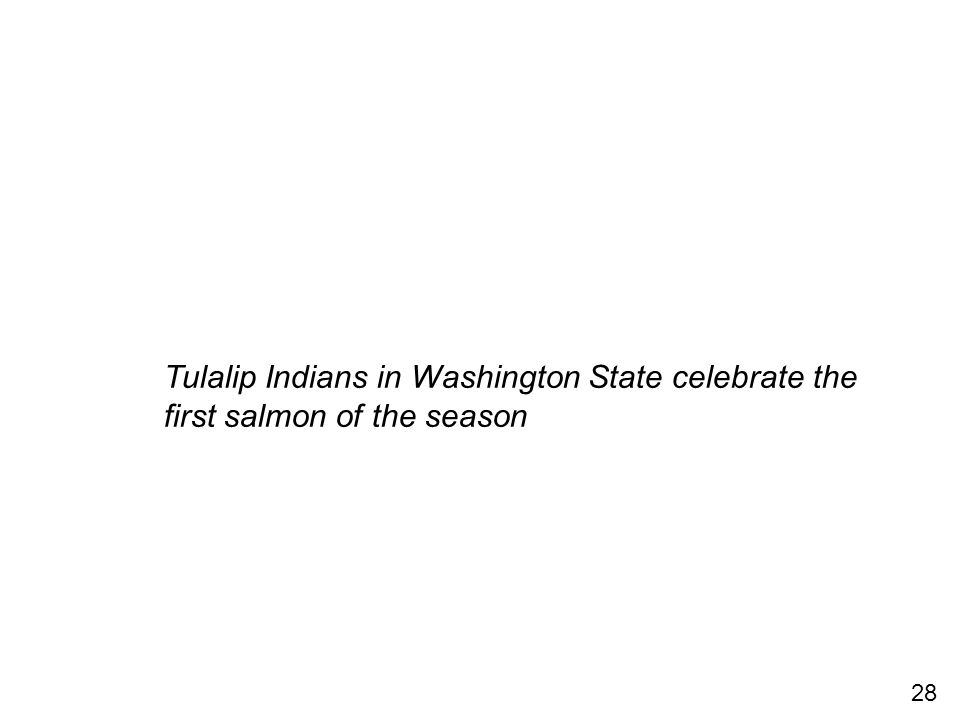 28 Tulalip Indians in Washington State celebrate the first salmon of the season