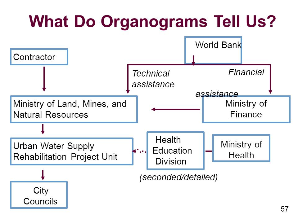 57 What Do Organograms Tell Us.
