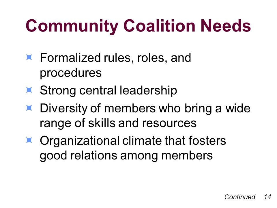 Community Coalition Needs Formalized rules, roles, and procedures Strong central leadership Diversity of members who bring a wide range of skills and resources Organizational climate that fosters good relations among members Continued 14