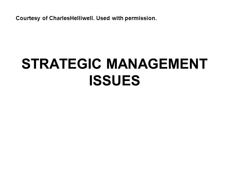 STRATEGIC MANAGEMENT ISSUES Courtesy of CharlesHelliwell. Used with permission.