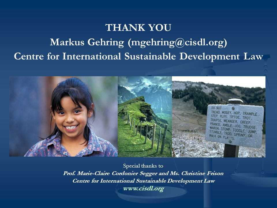 THANK YOU Markus Gehring (mgehring@cisdl.org) Centre for International Sustainable Development Law Special thanks to Prof.