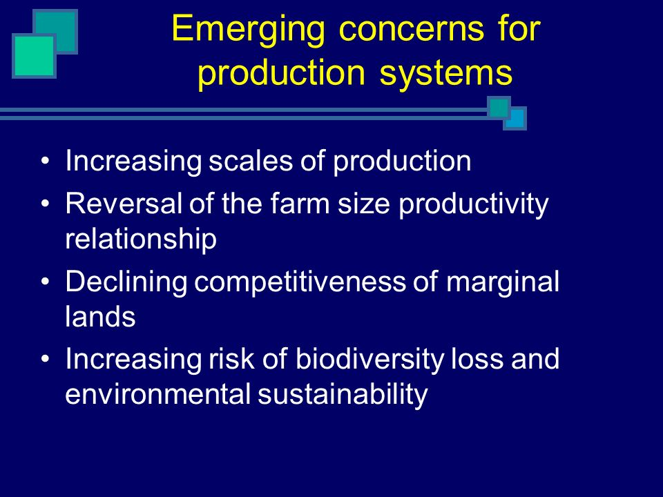 Emerging concerns for production systems Increasing scales of production Reversal of the farm size productivity relationship Declining competitiveness of marginal lands Increasing risk of biodiversity loss and environmental sustainability
