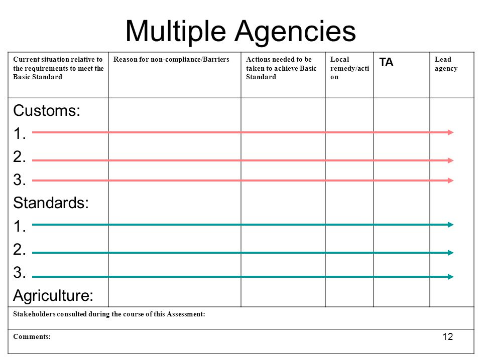 12 Multiple Agencies Current situation relative to the requirements to meet the Basic Standard Reason for non-compliance/BarriersActions needed to be taken to achieve Basic Standard Local remedy/acti on TA Lead agency Customs: 1.