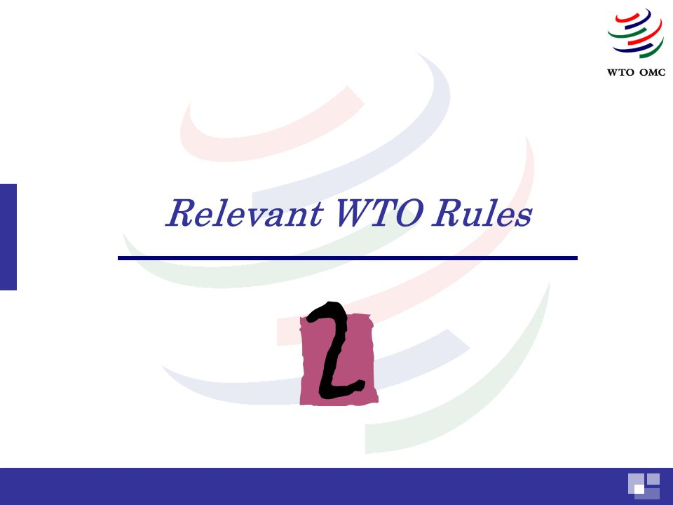 Relevant WTO Rules
