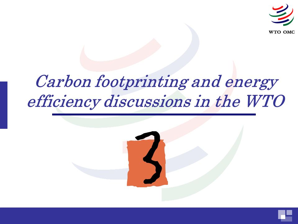 Carbon footprinting and energy efficiency discussions in the WTO
