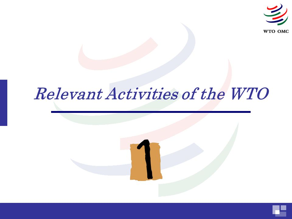 Relevant Activities of the WTO