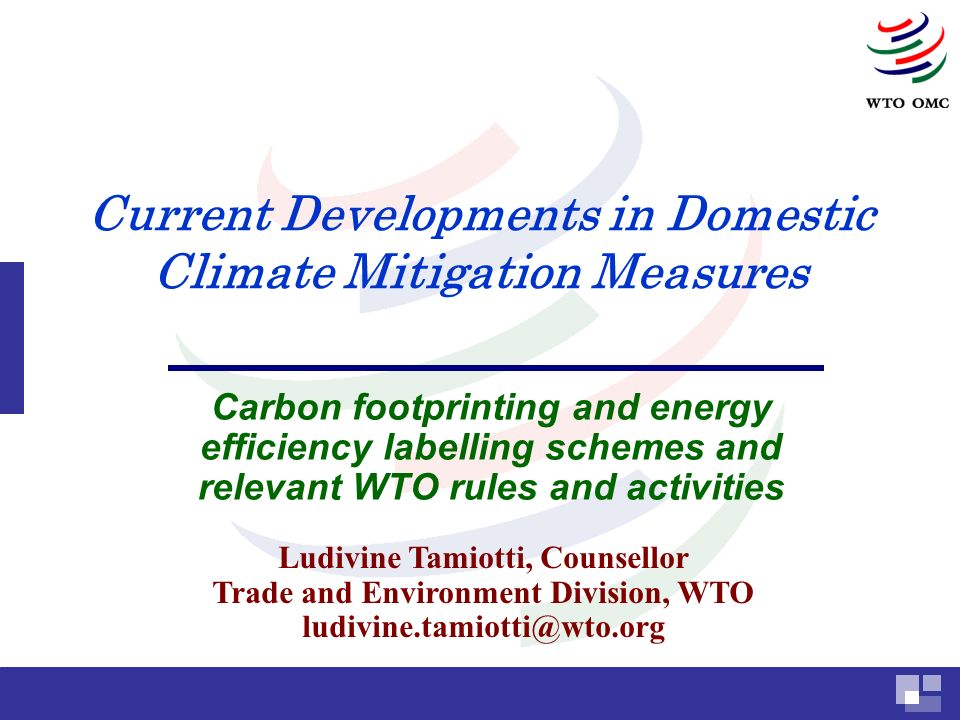 Current Developments in Domestic Climate Mitigation Measures Carbon footprinting and energy efficiency labelling schemes and relevant WTO rules and activities Ludivine Tamiotti, Counsellor Trade and Environment Division, WTO ludivine.tamiotti@wto.org