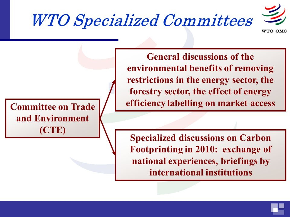 WTO Specialized Committees Committee on Trade and Environment (CTE) General discussions of the environmental benefits of removing restrictions in the energy sector, the forestry sector, the effect of energy efficiency labelling on market access Specialized discussions on Carbon Footprinting in 2010: exchange of national experiences, briefings by international institutions