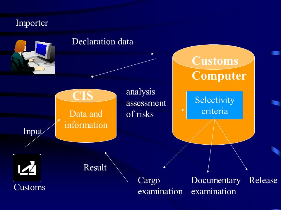 Customs Computer Selectivity criteria Data and information CIS Cargo Documentary Release examination Result analysis assessment of risks Declaration data Importer Customs Input