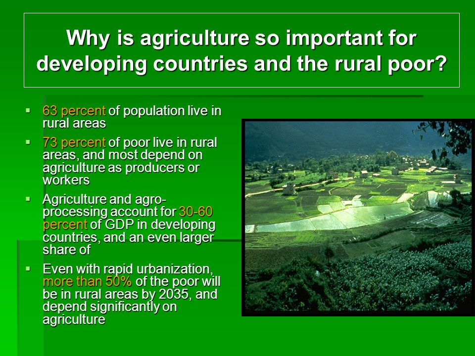 Why is agriculture so important for developing countries and the rural poor.
