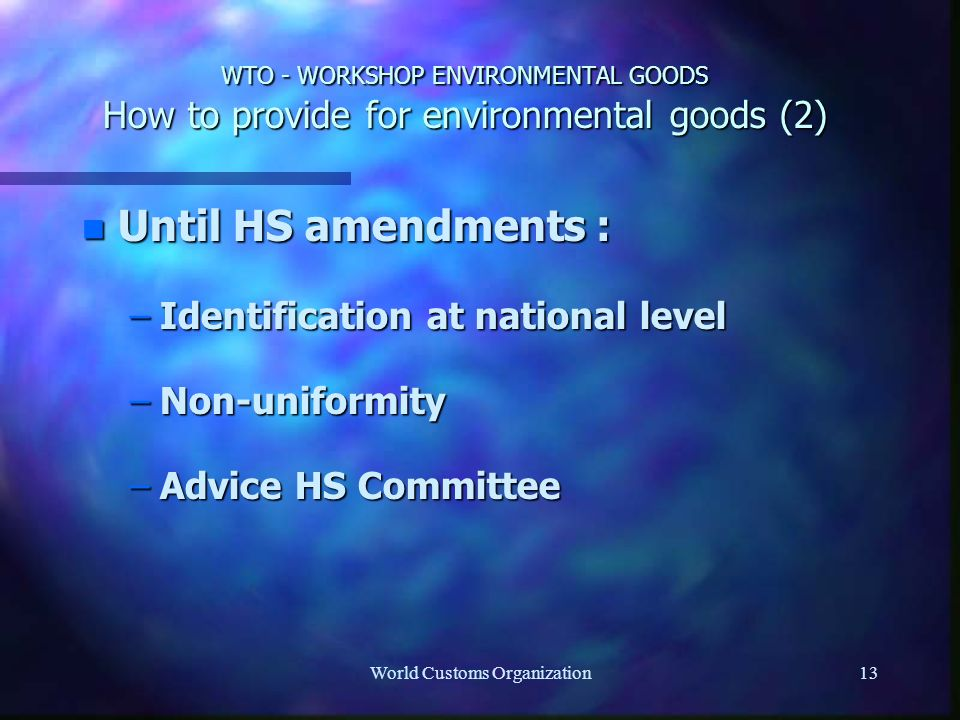 World Customs Organization13 WTO - WORKSHOP ENVIRONMENTAL GOODS How to provide for environmental goods (2) n Until HS amendments : –Identification at national level –Non-uniformity –Advice HS Committee