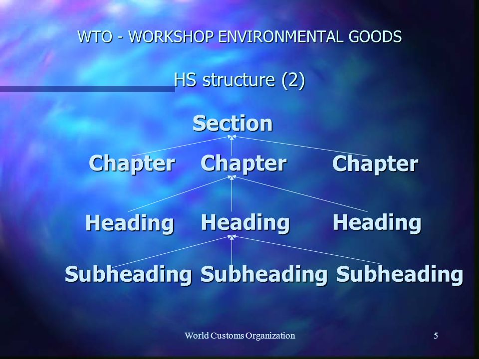 World Customs Organization5 WTO - WORKSHOP ENVIRONMENTAL GOODS HS structure (2) Section ChapterChapterChapter Heading HeadingHeading SubheadingSubheadingSubheading