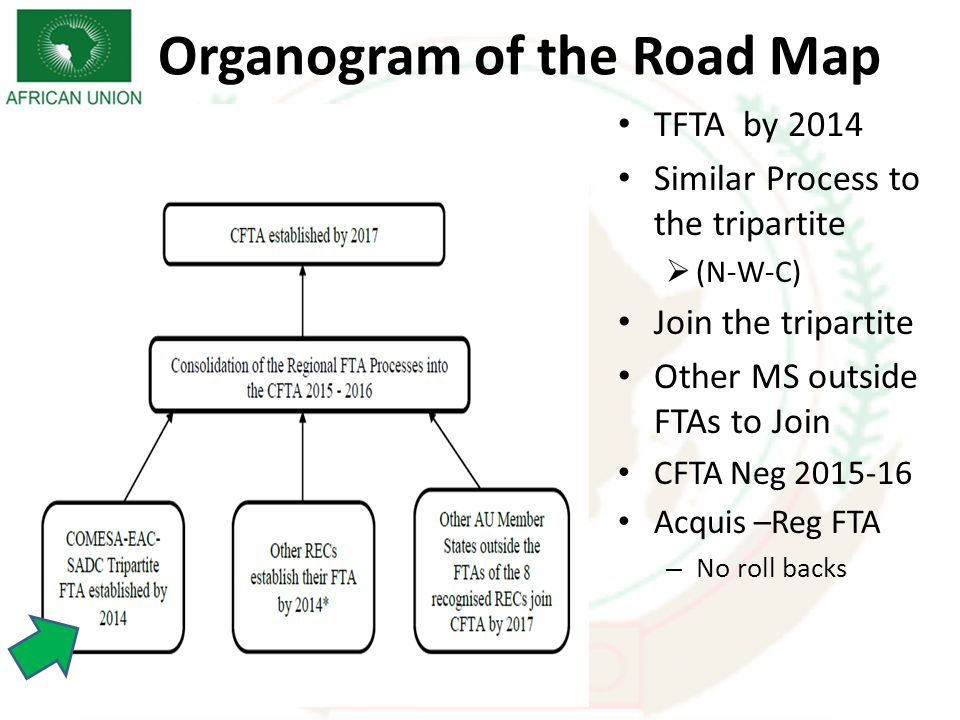 TFTA by 2014 Similar Process to the tripartite (N-W-C) Join the tripartite Other MS outside FTAs to Join CFTA Neg 2015-16 Acquis –Reg FTA – No roll backs