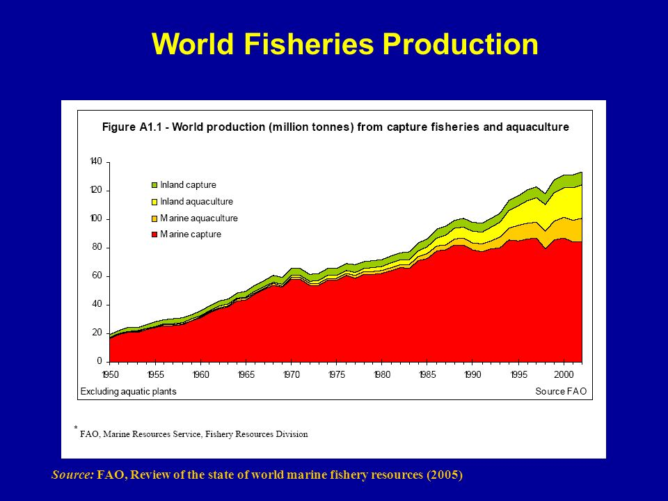 World Fisheries Production Source: FAO, Review of the state of world marine fishery resources (2005)