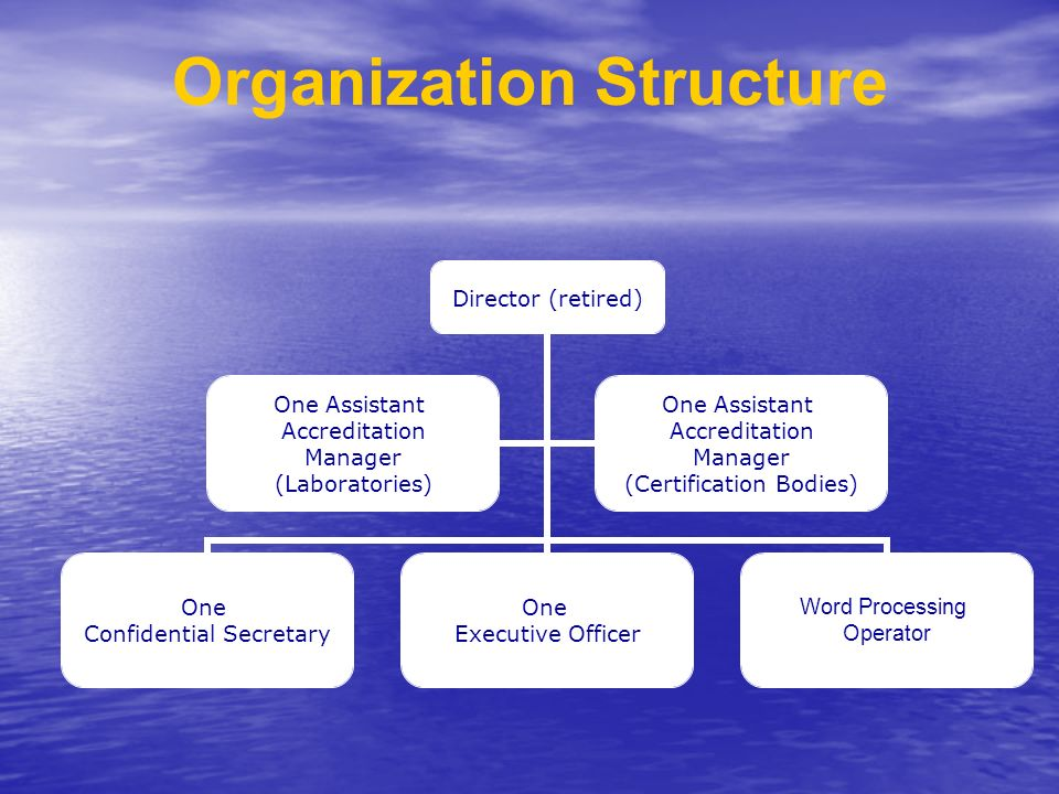 Director (retired) One Confidential Secretary One Executive Officer Word Processing Operator One Assistant Accreditation Manager (Laboratories) One Assistant Accreditation Manager (Certification Bodies) Organization Structure
