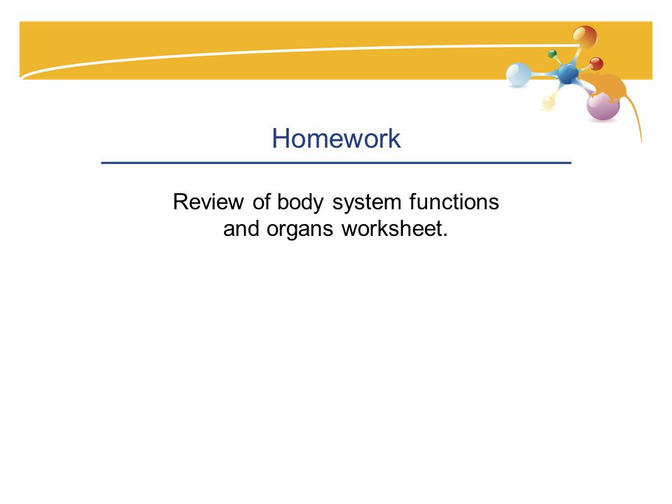 Homework Review of body system functions and organs worksheet.