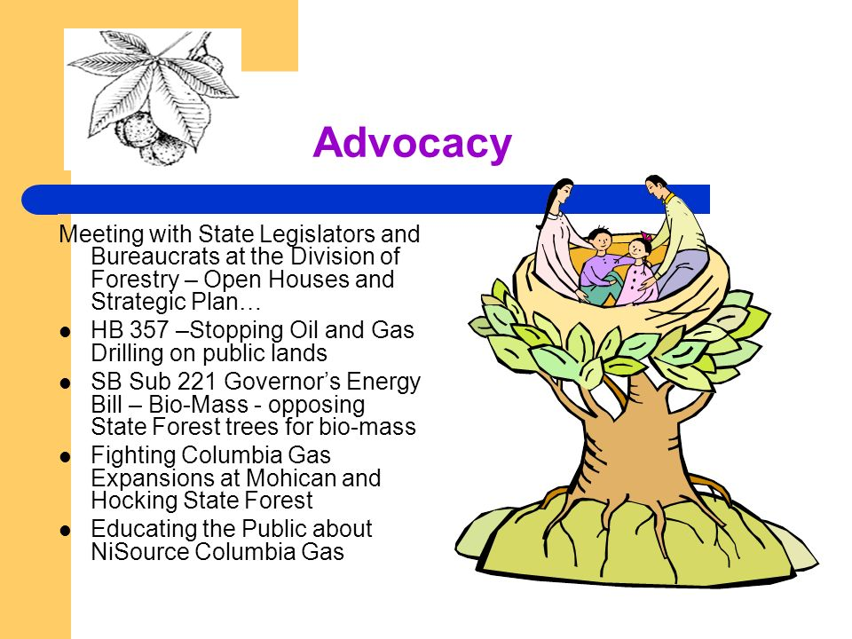 Advocacy Meeting with State Legislators and Bureaucrats at the Division of Forestry – Open Houses and Strategic Plan… HB 357 –Stopping Oil and Gas Drilling on public lands SB Sub 221 Governors Energy Bill – Bio-Mass - opposing State Forest trees for bio-mass Fighting Columbia Gas Expansions at Mohican and Hocking State Forest Educating the Public about NiSource Columbia Gas