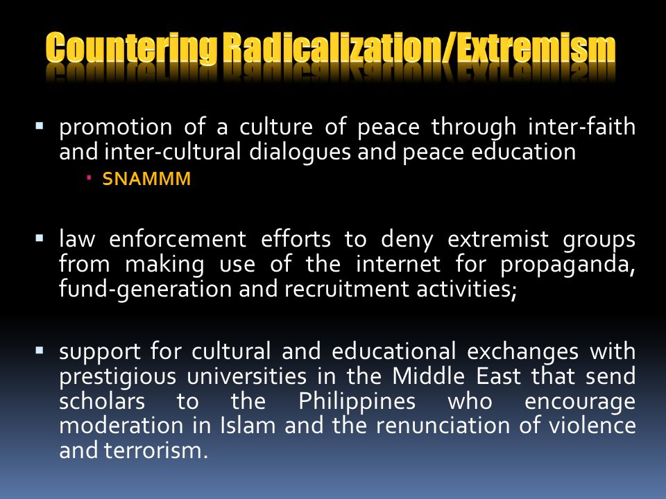 promotion of a culture of peace through inter-faith and inter-cultural dialogues and peace education SNAMMM law enforcement efforts to deny extremist groups from making use of the internet for propaganda, fund-generation and recruitment activities; support for cultural and educational exchanges with prestigious universities in the Middle East that send scholars to the Philippines who encourage moderation in Islam and the renunciation of violence and terrorism.
