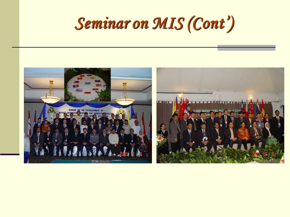 Seminar on MIS (Cont)