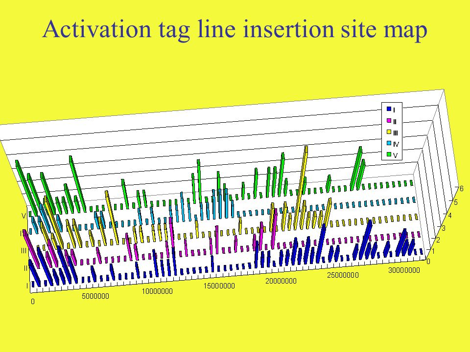 Activation tag line insertion site map