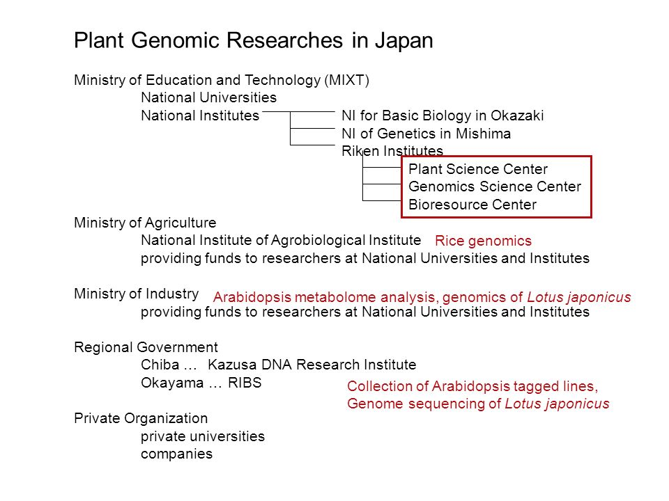 Plant Genomic Researches in Japan Ministry of Education and Technology (MIXT) National Universities National InstitutesNI for Basic Biology in Okazaki NI of Genetics in Mishima Riken Institutes Plant Science Center Genomics Science Center Bioresource Center Ministry of Agriculture National Institute of Agrobiological Institute providing funds to researchers at National Universities and Institutes Ministry of Industry providing funds to researchers at National Universities and Institutes Regional Government Chiba …Kazusa DNA Research Institute Okayama … RIBS Private Organization private universities companies Rice genomics Arabidopsis metabolome analysis, genomics of Lotus japonicus Collection of Arabidopsis tagged lines, Genome sequencing of Lotus japonicus