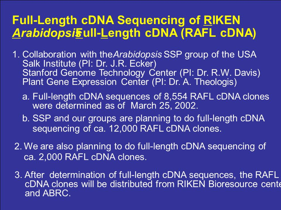 Full-Length cDNA Sequencing of RIKEN Arabidopsis Full-Length cDNA (RAFL cDNA) 1.