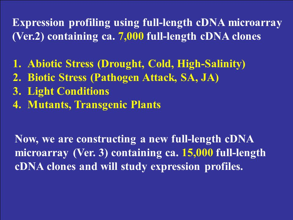 Expression profiling using full-length cDNA microarray (Ver.2) containing ca.