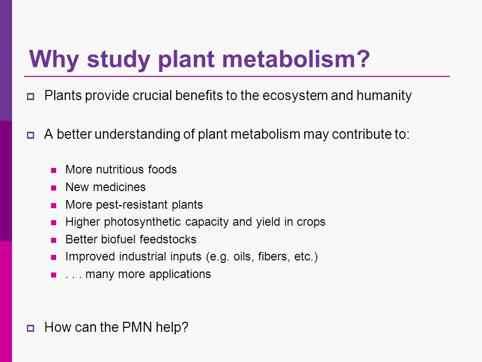 Plants provide crucial benefits to the ecosystem and humanity A better understanding of plant metabolism may contribute to: More nutritious foods New medicines More pest-resistant plants Higher photosynthetic capacity and yield in crops Better biofuel feedstocks Improved industrial inputs (e.g.