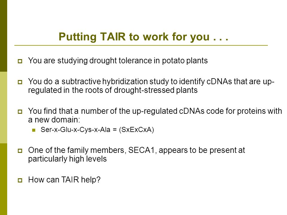Putting TAIR to work for you...