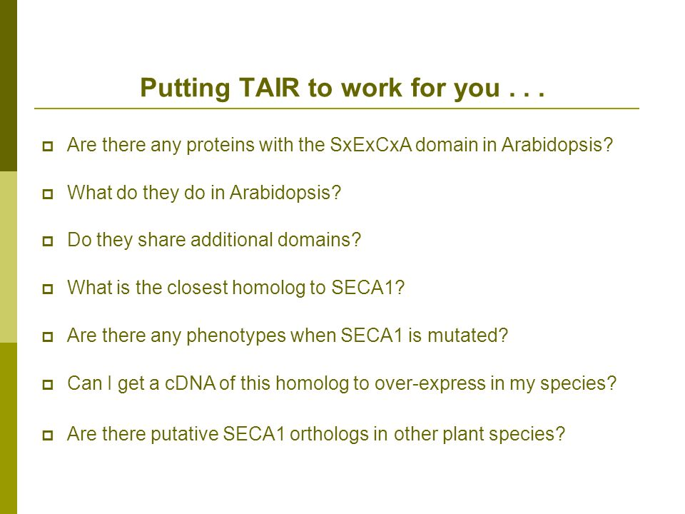 Putting TAIR to work for you... Are there any proteins with the SxExCxA domain in Arabidopsis.