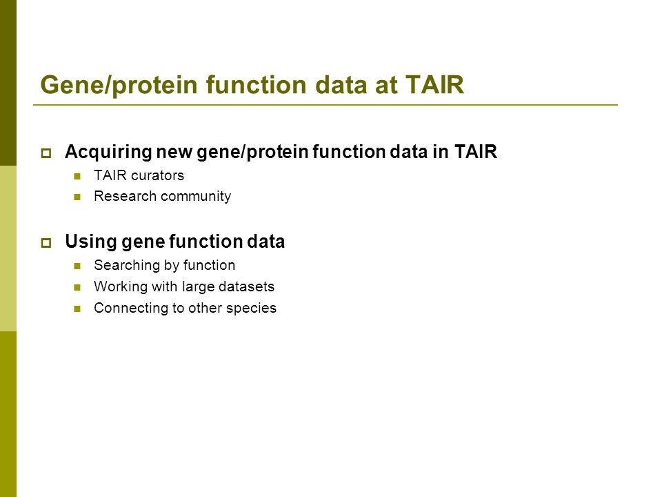 Acquiring new gene/protein function data in TAIR TAIR curators Research community Using gene function data Searching by function Working with large datasets Connecting to other species Gene/protein function data at TAIR