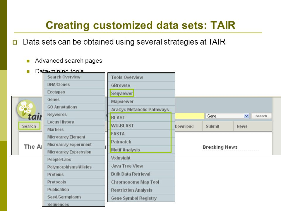 Creating customized data sets: TAIR Data sets can be obtained using several strategies at TAIR Advanced search pages Data-mining tools