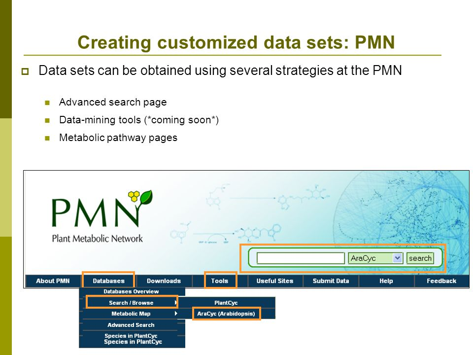 Creating customized data sets: PMN Data sets can be obtained using several strategies at the PMN Advanced search page Data-mining tools (*coming soon*) Metabolic pathway pages